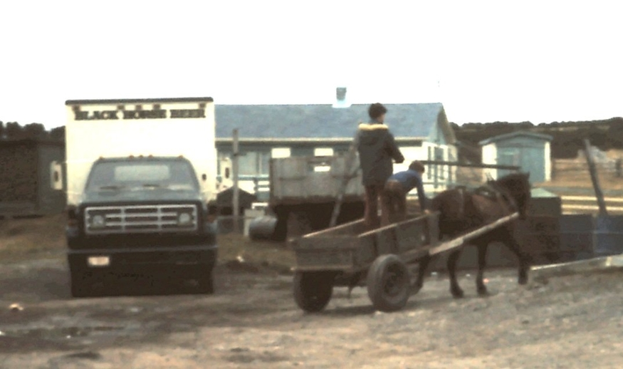 Horse and cart meets truck in St Bride's, Newfoundland, ca. 1975 / Aidan O'Hara