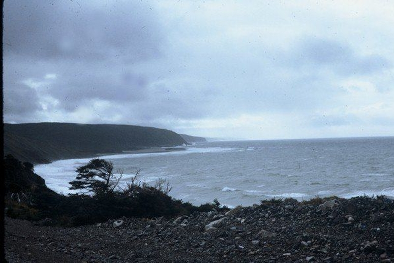 A stormy day on the Cape Shore, ca. 1976 / Aidan O'Hara