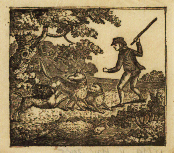 The minstrel boy, woodcut