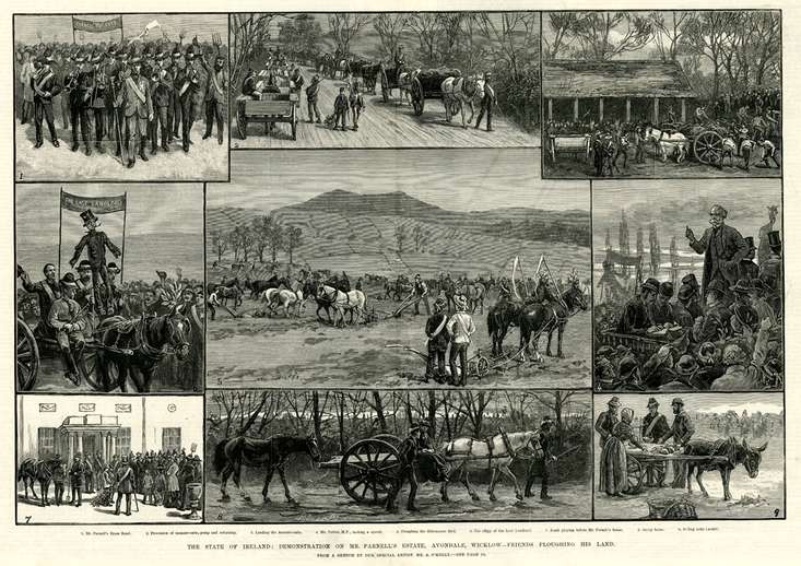 Demonstration on Mr. Parnell's Estate, Avondale, Wicklow, 1882 / A. O'Kelly