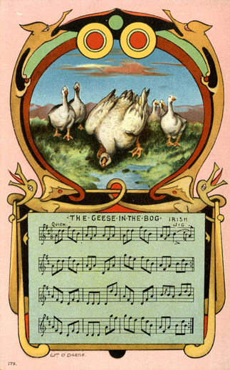 The geese in the bog / William O'Duane
