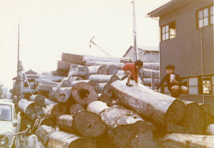 Timber for harp making / [unidentified photographer]